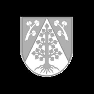 Integriertes Gemeindlichens Entwicklungskonzept (IGEK)